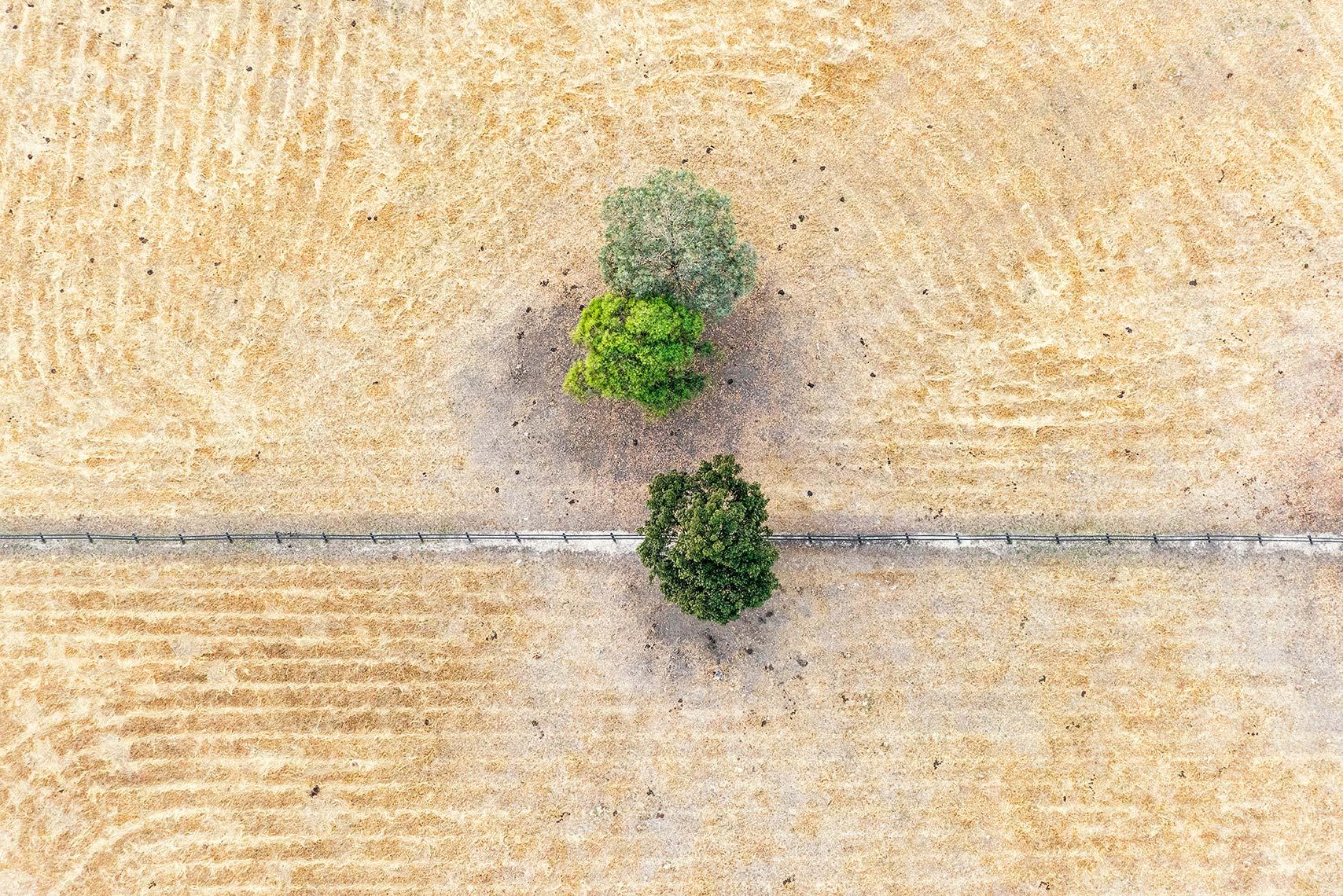 Aerial Landscape Yellow Grass