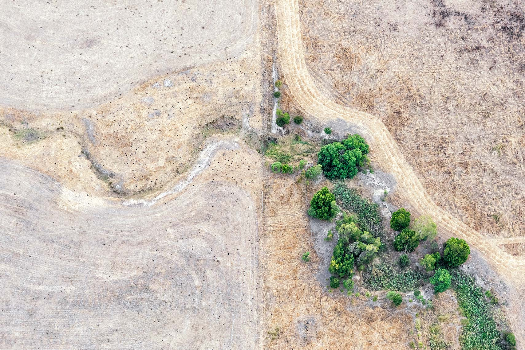 Aerial Landscape Hint of Green