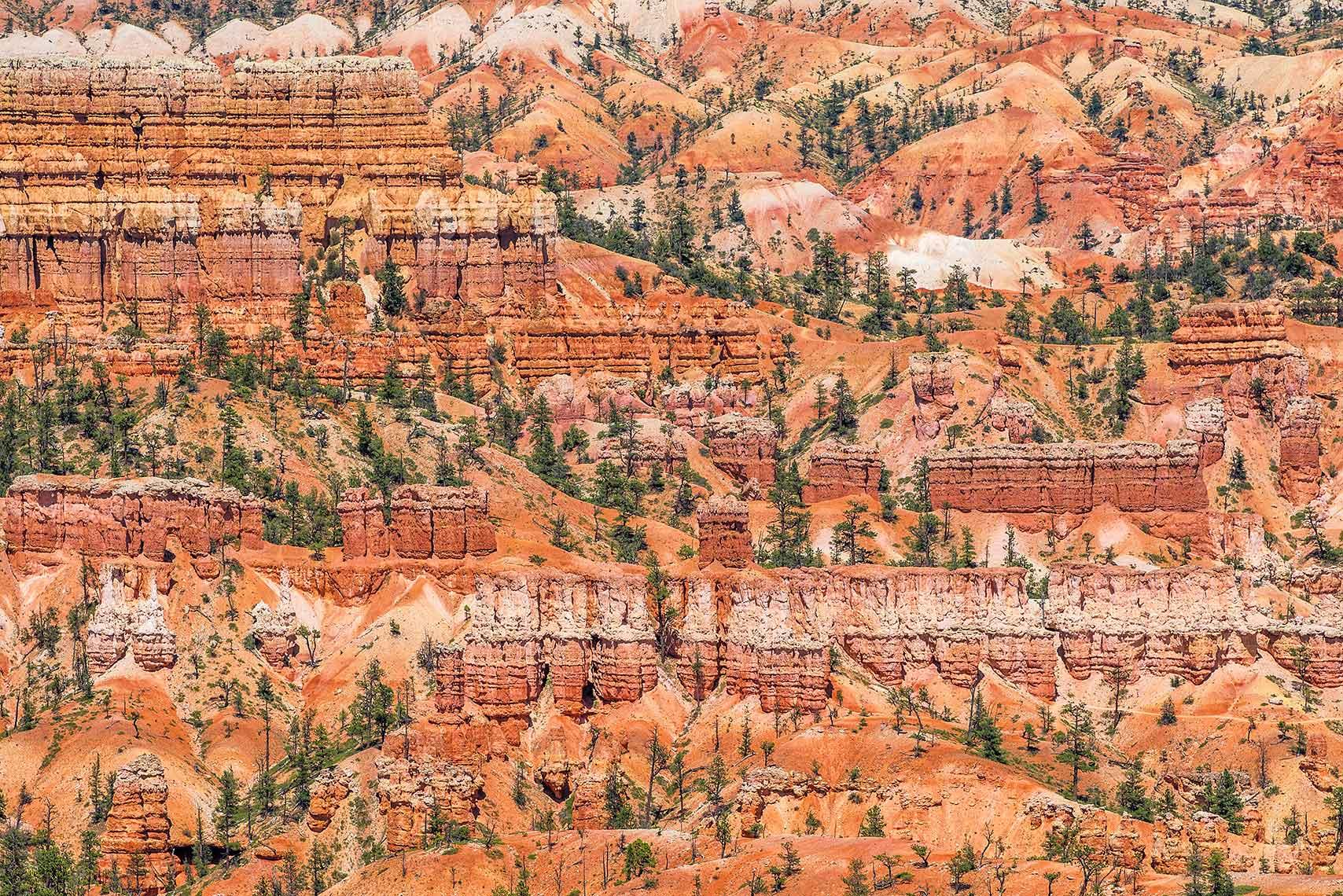 Landscape Bryce Canyon